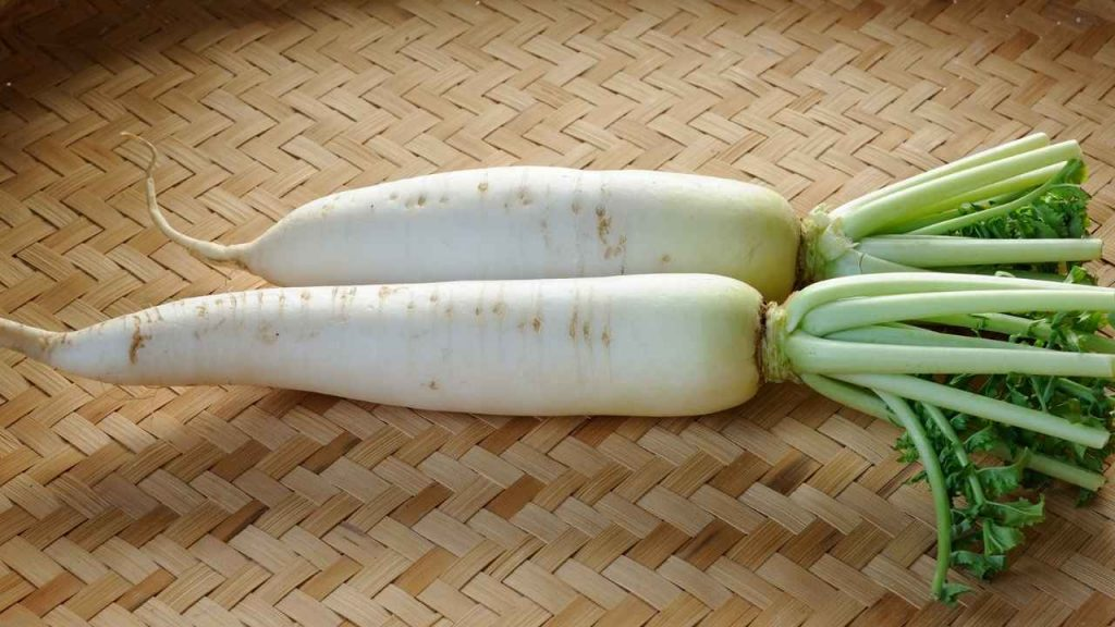 Picture Daikon Radish with is a vegetable that starts with d