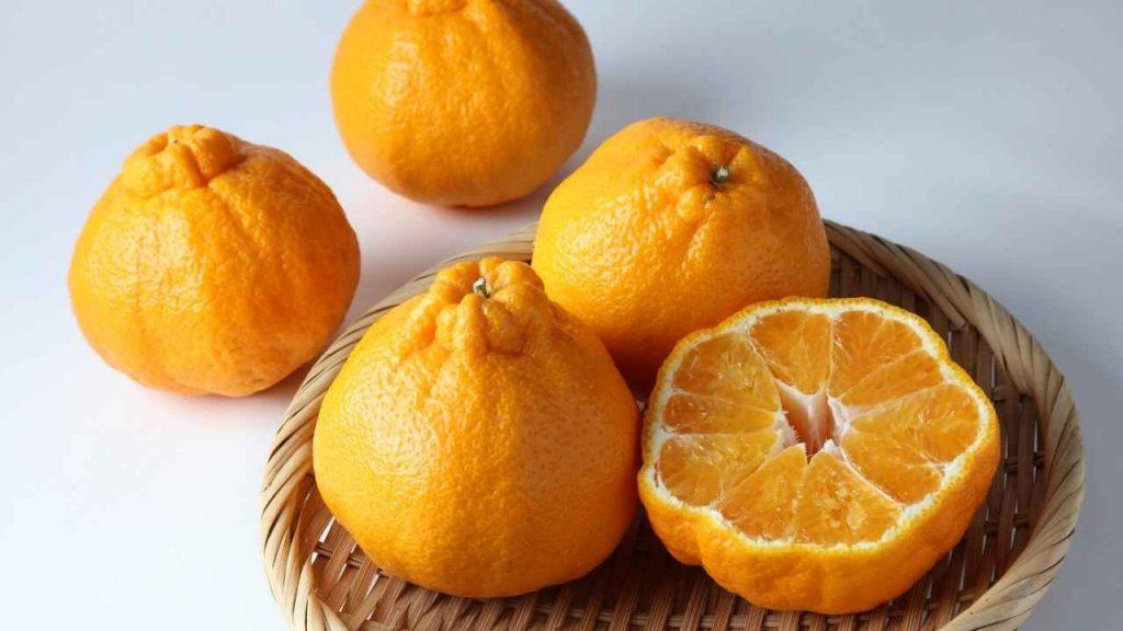 Dekopon Fruit is a fruit that starts with D